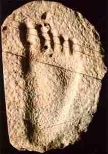 impronta-212x300 Il Manufatto di London e l'Impronta di Burdick