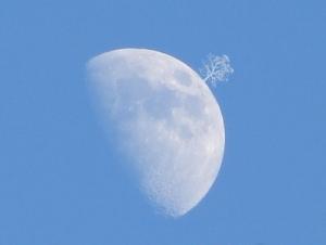 Moon3-300x226 L'Uno e il Tutto