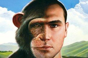 scimmia-uomo-300x200 Uomini e Scimpanzé siamo forse parenti?