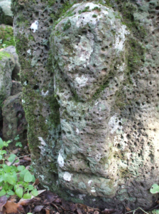 shard12-1-224x300 Sardegna: Scoperta una città Shardana nella foresta!