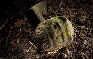 NEWS: Civiltà Perduta scoperta nella Foresta Pluviale dell'Honduras